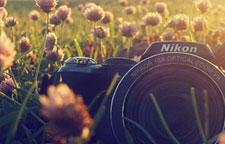 Photo-Group